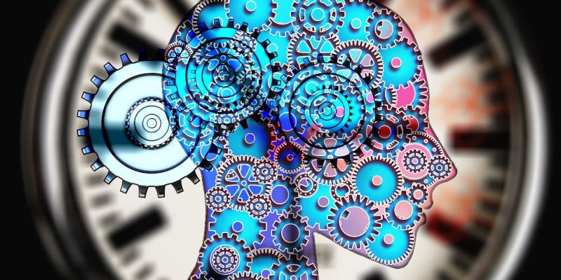 neuer-trendstudiengang-wirtschaftspsychologie-kopf-mit-zahnraedern